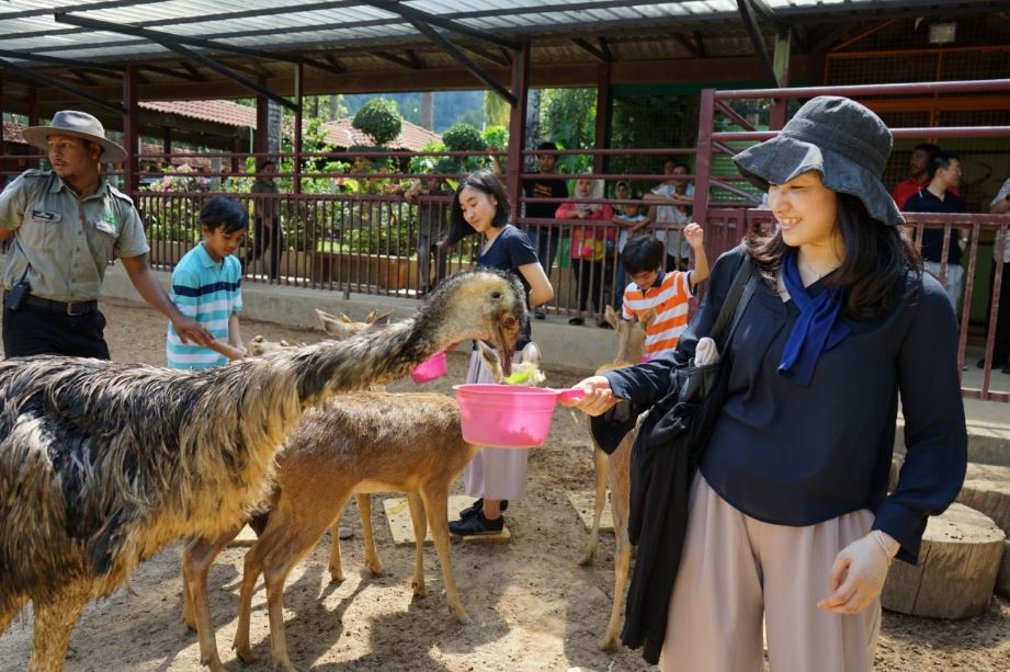 Labour Day Promotion | Langkawi Wildlife Park