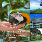 Top 5 Attractions in Langkawi | Langkawi Wildlife Park