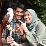 Animal Showcase for Christmas Celebrations at Four Seasons Langkawi