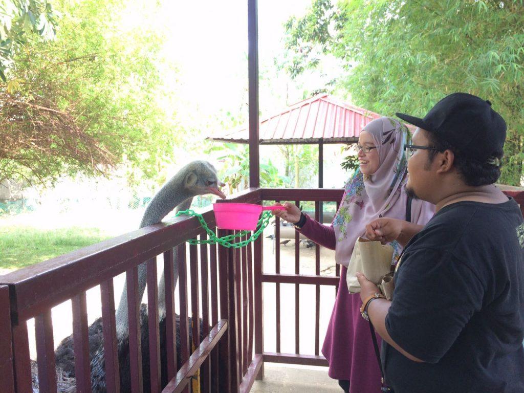 B&G Macaw | Langkawi Wildlife Park